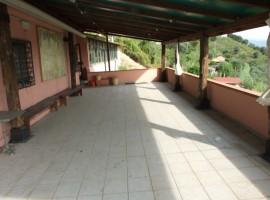 MASSA - PERIFERIA  ATTIVITA'/LIC.COMMERCIALE VENDITA