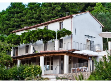 Villa  Vendita Pietrasanta - Collina