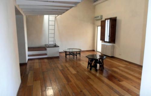 cerca Firenze Centro Oltrarno / S. Spirito / S.frediano APPARTAMENTO AFFITTO