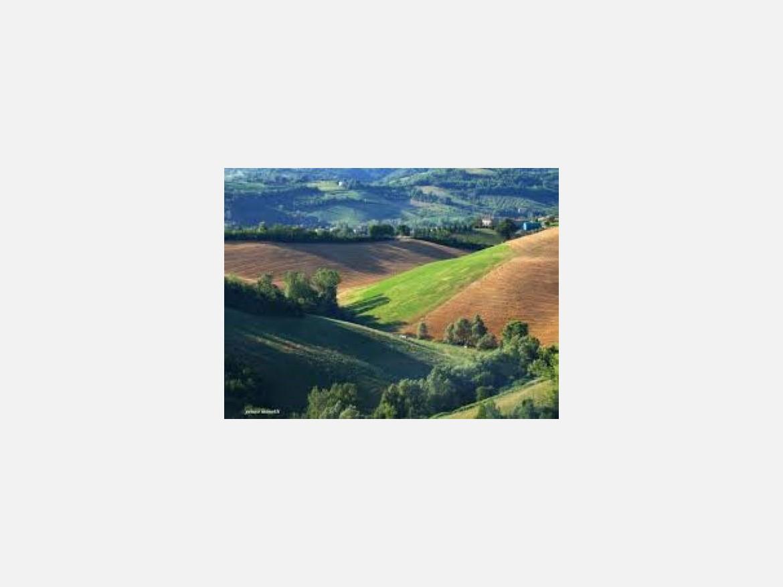 TERRENO AGRICOLO in VENDITA a CASTELLO DI SERRAVALLE
