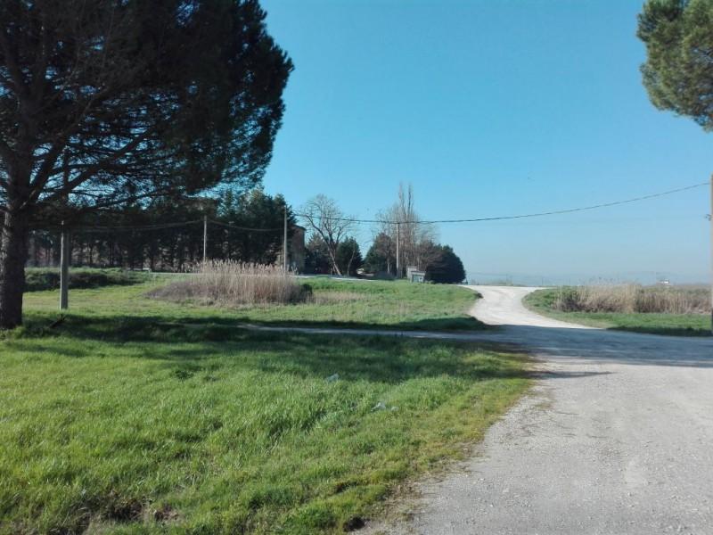 CAPANNONE in VENDITA a TORRITA DI SIENA