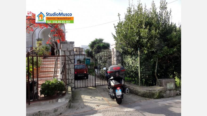 2STUDIO MUSCO