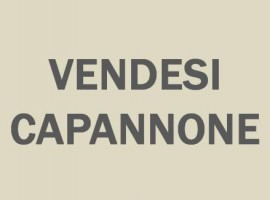 cerca MASSA - GENERICA MASSA CAPANNONE VENDITA
