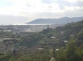 MONTIGNOSO - GENERICA  RUSTICO VENDITA