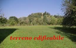 AMEGLIA Caffaggio AREA EDIFICABILE VENDITA
