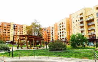 Appartamento  Vendita  Pescara - Generica