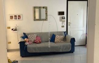 Appartamento  Vendita  Viareggio - Bicchio