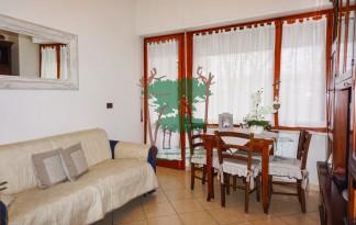 Appartamento  Vendita  Viareggio - Citta' Giardino