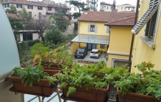 Rent  Apartment in  Firenze  santa maria novella