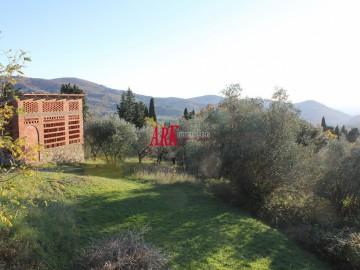 COLONICA VENDITA Fiesole Caldine