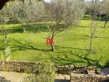 Appartamento  Affitto Firenze - Porta Romana / Boboli