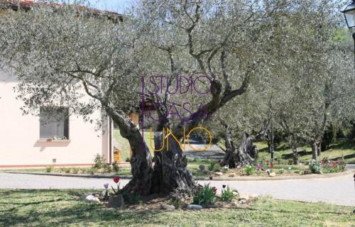 cerca Terranuova Bracciolini Ville CASA INDIPENDENTE VENDITA