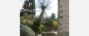 252 Caterina Pirrone immobiliare