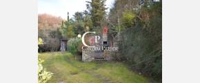 102 Caterina Pirrone immobiliare
