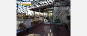 152 STUDIO MUSCO