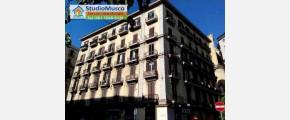 102 STUDIO MUSCO