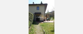222 ABACUS IMMOBILIARE