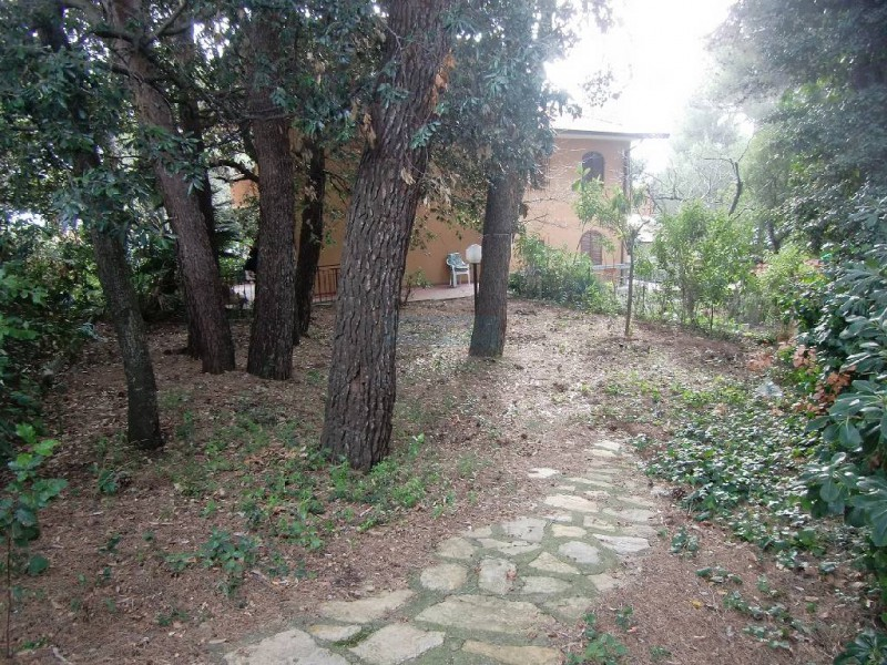 APPARTAMENTO INDIPENDENTE in VENDITA a ROSIGNANO MARITTIMO - CASTIGLIONCELLO