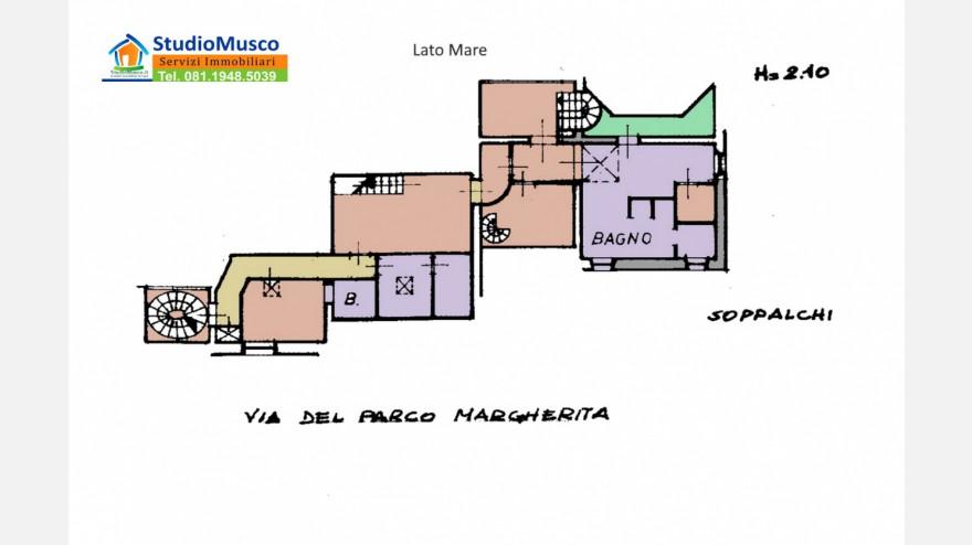 33STUDIO MUSCO