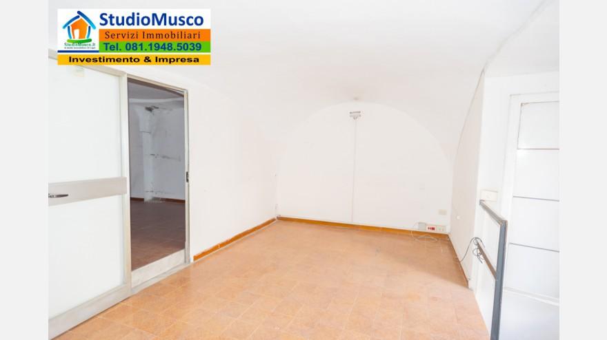 16STUDIO MUSCO