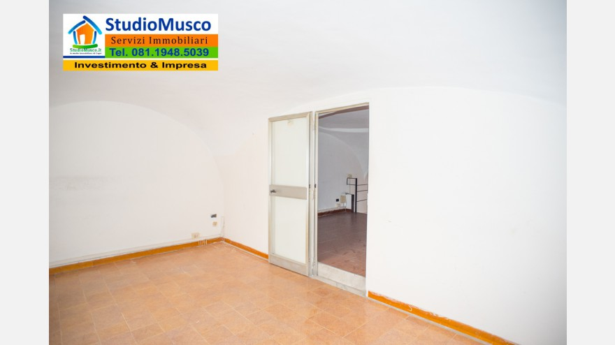 17STUDIO MUSCO