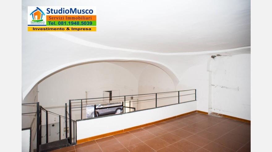 18STUDIO MUSCO