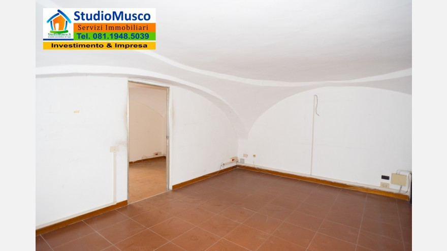 19STUDIO MUSCO