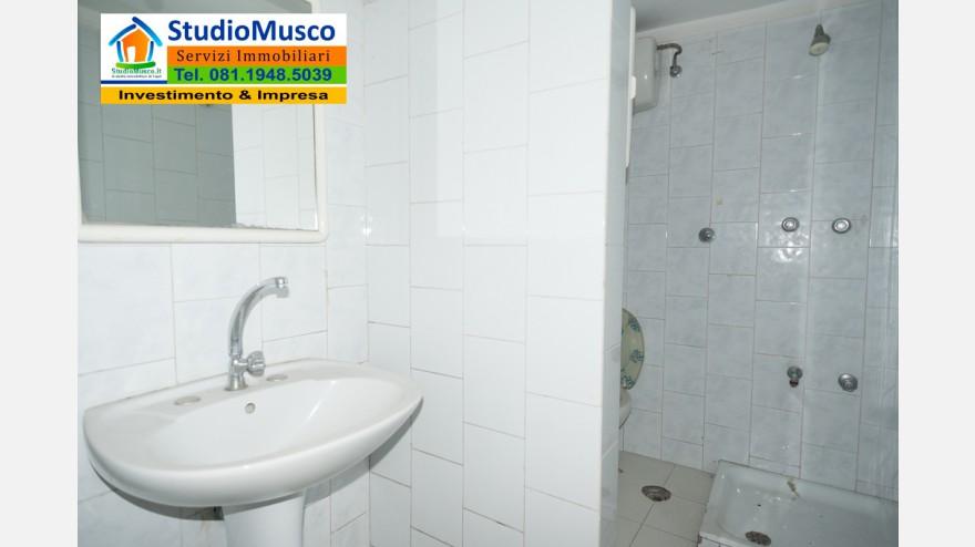 21STUDIO MUSCO