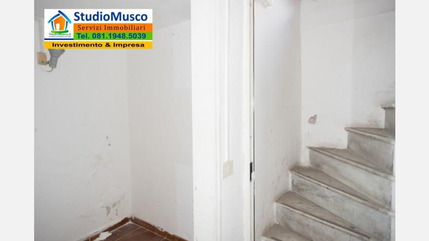 22STUDIO MUSCO