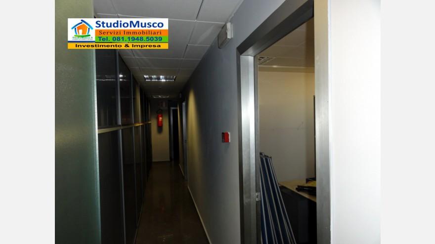 14STUDIO MUSCO