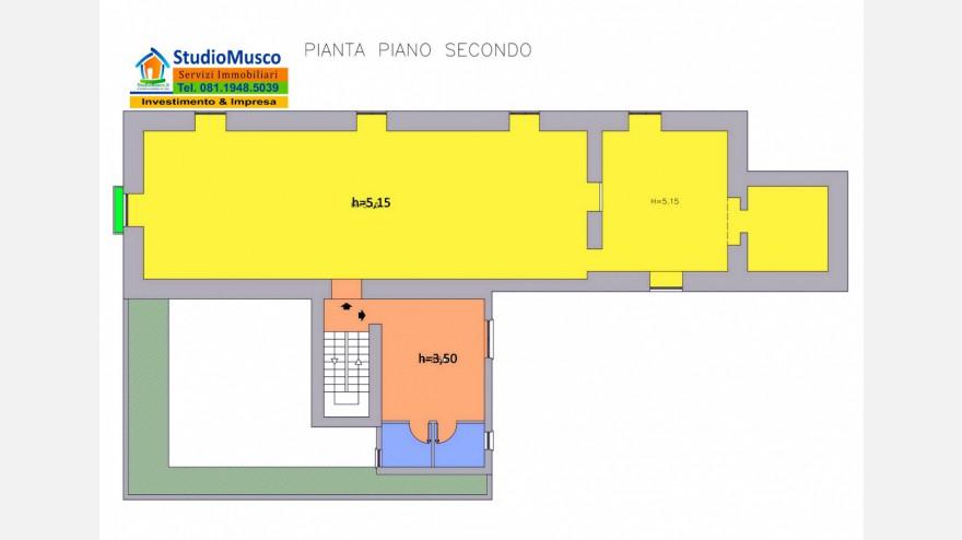 9STUDIO MUSCO